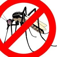Наземно третиране срещу комари