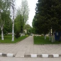 150 лица от община Гулянци са поставени под карантина от началото на март до сега